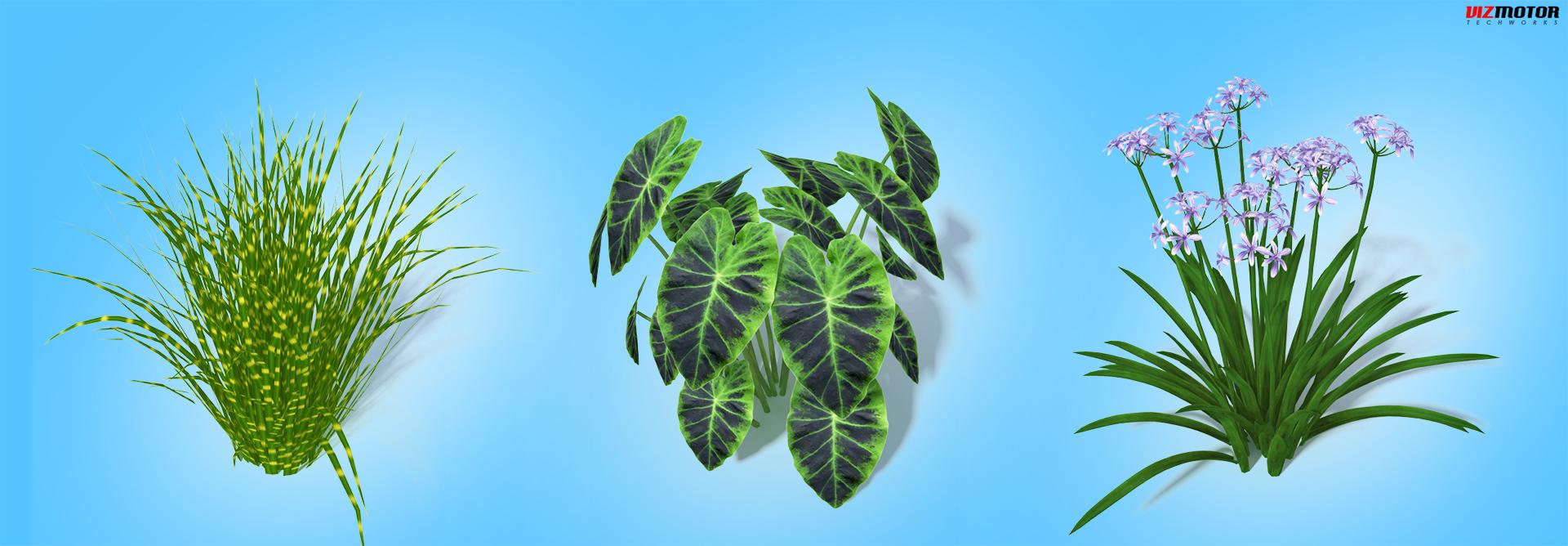 VizMotor_Plants_2