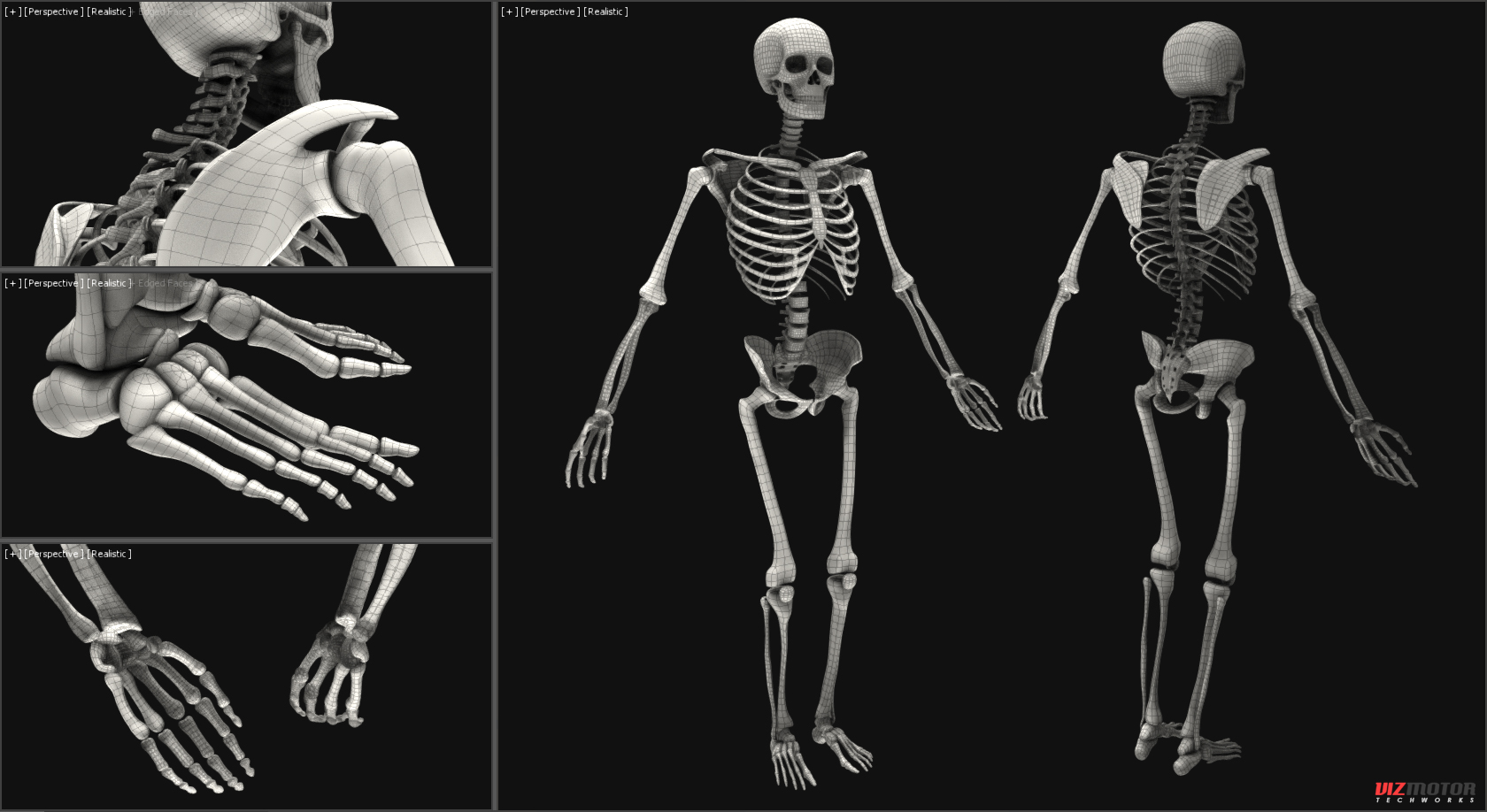 Vizmotor_Skeleton_wire