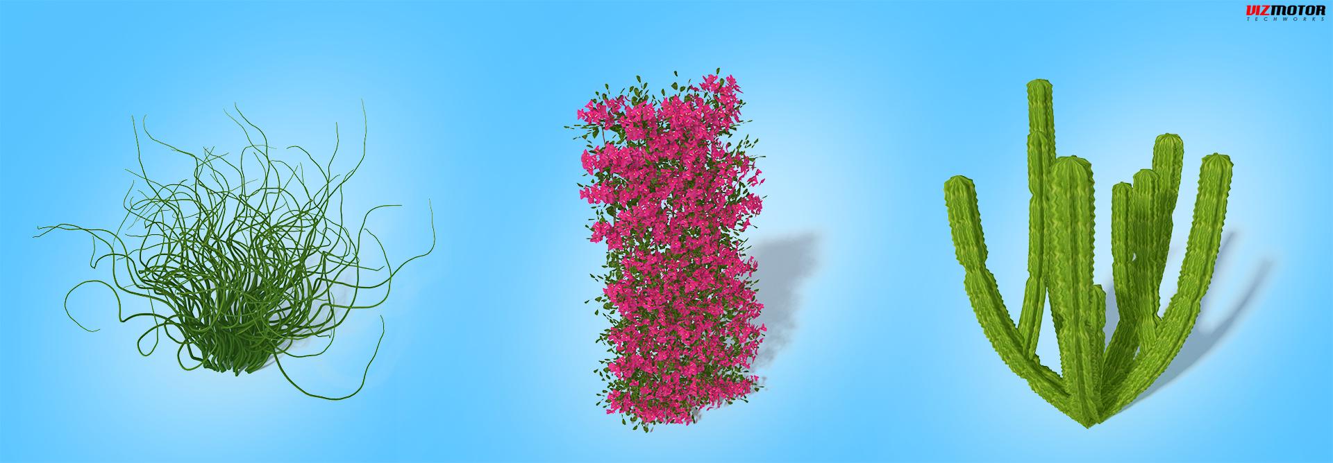 VizMotor_Plants_3